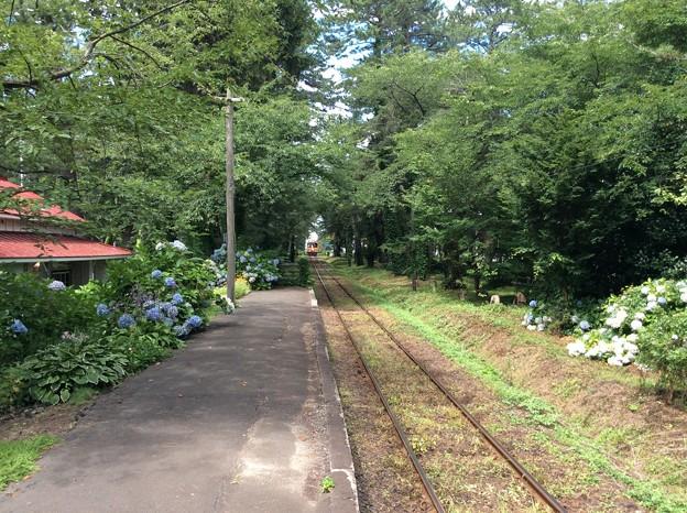 Photos: 芦野公園駅から津軽中里方面を望む
