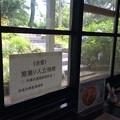 Photos: 喫茶の窓からホームが見える