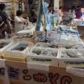 Photos: 道の駅いまべつ 鮮魚コーナー