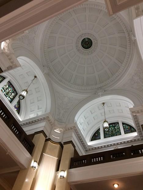 国立科学博物館 天井
