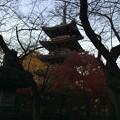 上野東照宮3