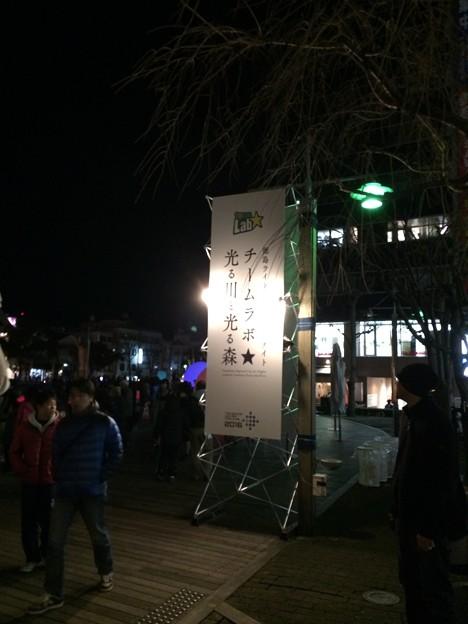 チームラボ 光る川と光る森in徳島2