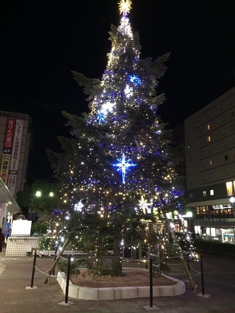 Photos: 2016 クリスマスツリーin徳島