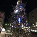2016 クリスマスツリーin徳島