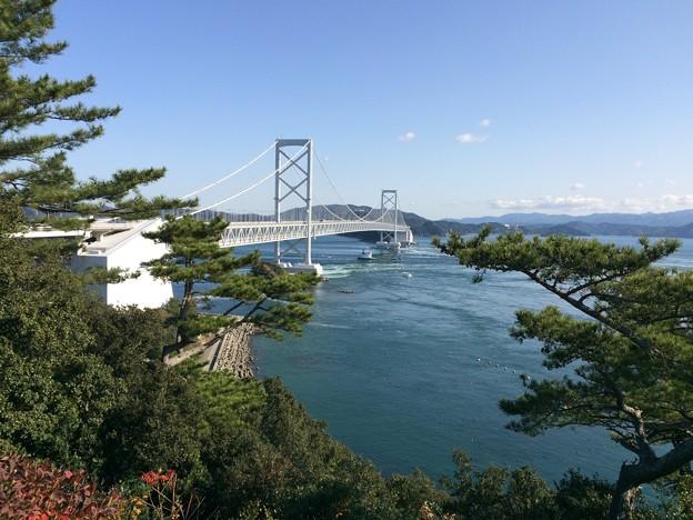 大鳴門橋 遠望