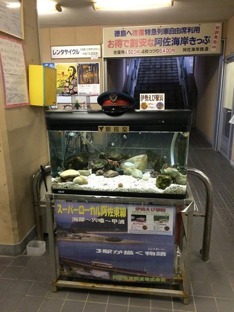 宍喰駅4 ~伊勢えび駅長~