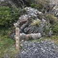 室戸岬9 ~子授の岩~