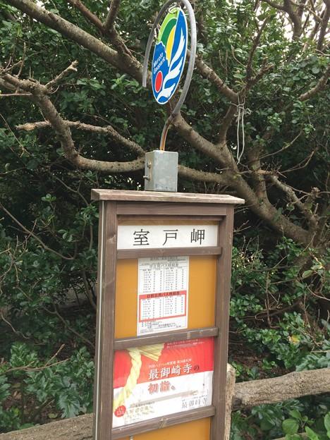 室戸岬15 ~室戸岬バス停~