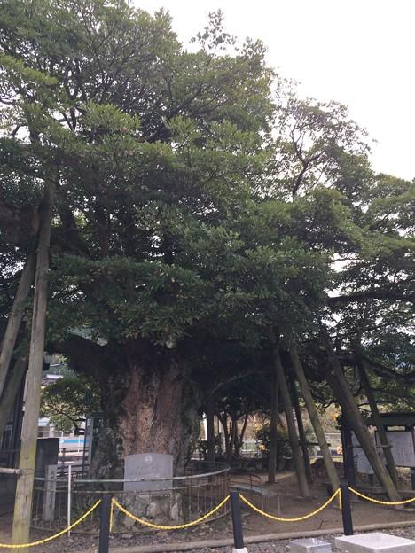 讃岐財田駅6