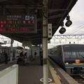 Photos: 多度津駅3 ~特急停車~