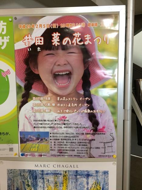 井田 菜の花まつり ポスター