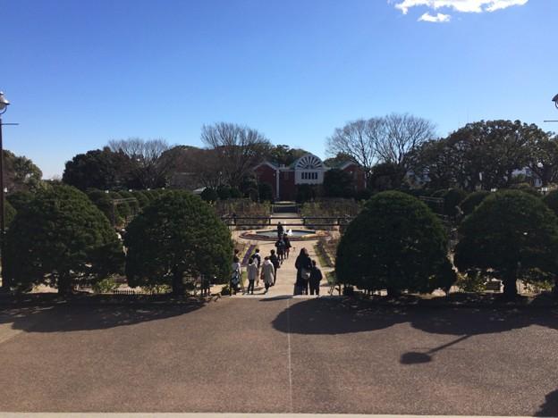 横浜 海の見える丘公園