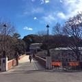 Photos: 神奈川近代文学館
