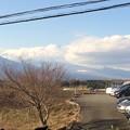 パサディナ美術館から富士山を見る