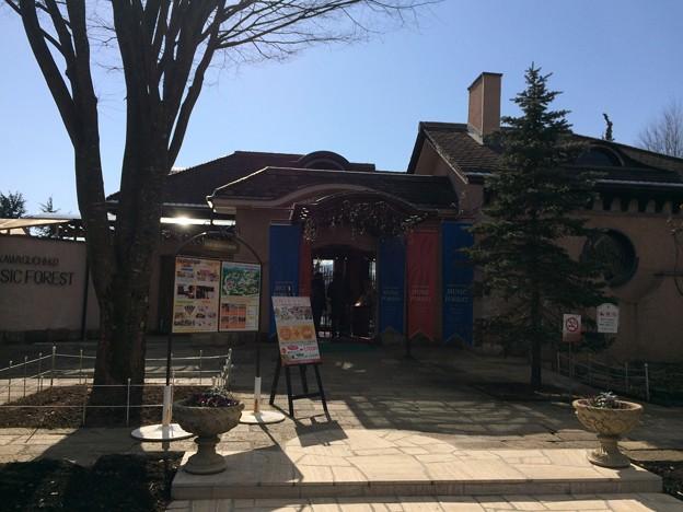 河口湖オルゴールの森美術館2