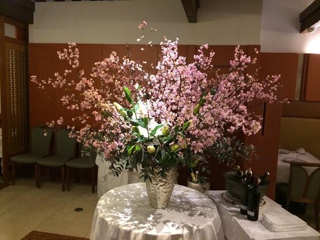 ヌーブォーサンス 桜