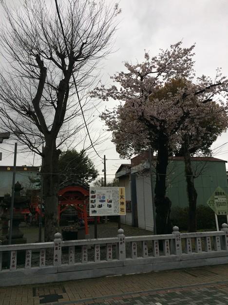 吉原祇園祭 天神社2