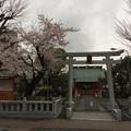 吉原祇園祭 天神社3