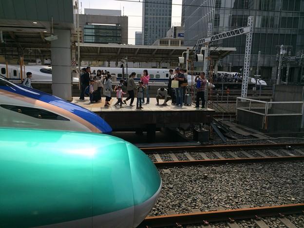 2017はやぶさ@東京駅