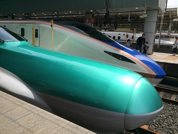 2017はやぶさ@東京駅3