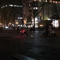 Photos: 大通公園7