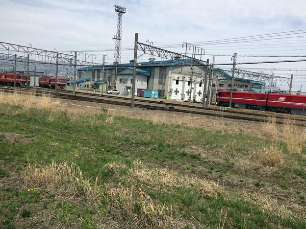 2017函館車両区1