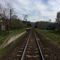踏切から大沼公園駅を望む