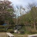 大沼公園自然ふれあいセンター4