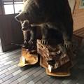 Photos: 大沼国定公園 休み処のクマ