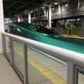 2017新函館北斗駅、再び3