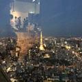 Photos: 六本木ヒルズから東京タワーが見える?