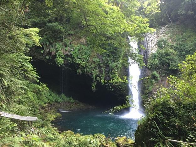 Photos: 浄蓮の滝2
