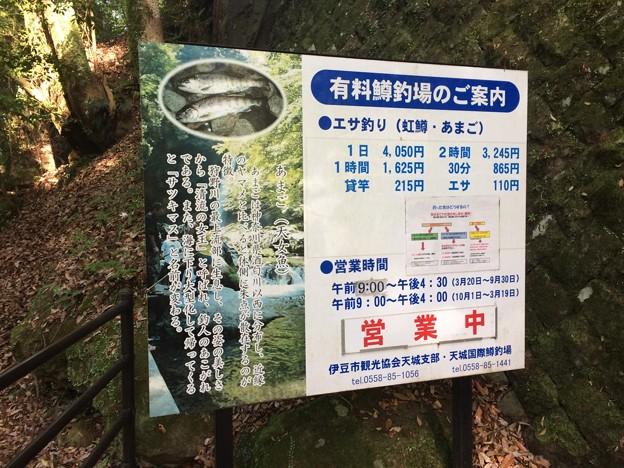 浄蓮の滝 鱒釣り場