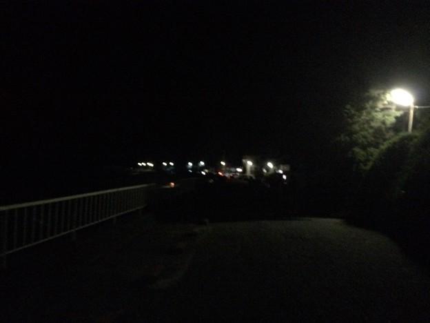 田牛の夜道1