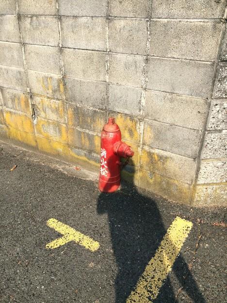 田牛 消火栓