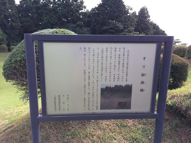 2017山中城址3 ~すり鉢曲輪~