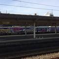 伊豆箱根鉄道 ラブライブ車両2