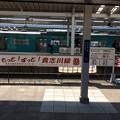 Photos: もっと!ずっと!貴志川線