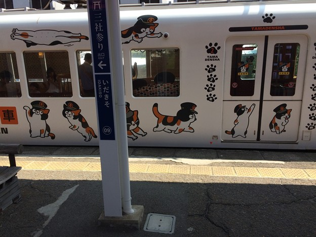 伊太祈曽駅3 ~たま電車~