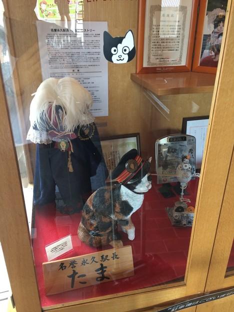 貴志駅10 ~初代名誉駅長~