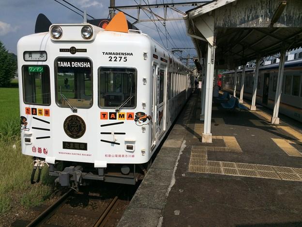 伊太祈曽駅5 ~たま電車、到着~