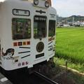 伊太祈曽駅7 ~たま電車、出発~