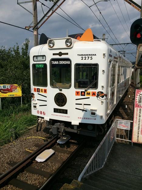 伊太祈曽駅8 ~たま電車、貴志駅へ~