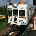 Photos: 伊太祈曽駅8 ~たま電車、貴志駅へ~