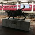 Photos: 津幡駅4
