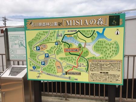 MISIAの森