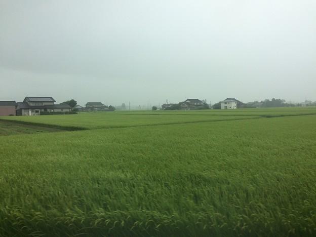 砺波平野と屋敷森3