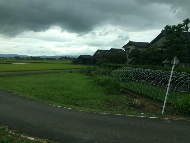 砺波平野と屋敷森4