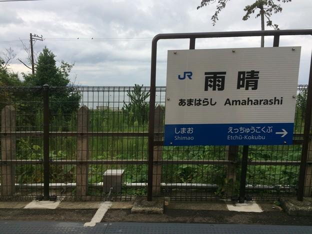 雨晴駅 駅名標