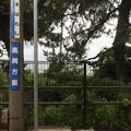 雨晴駅 発車
